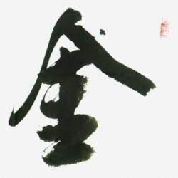 中国书法家协会理事 毕政《金生丽水》