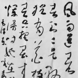 河北省书法家协会会员 段坤峰《毛泽东词-咏梅一首》8平尺