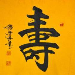 中国书法家协会会员 张学武《寿》4平尺