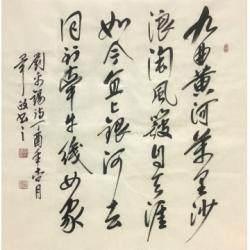中国书法家协会理事 毕政《浪淘沙》