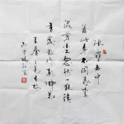 当代潜力书法家 杨新生《白梅》4平尺