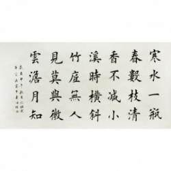 中国书协会员 连海明楷书《瓶梅》